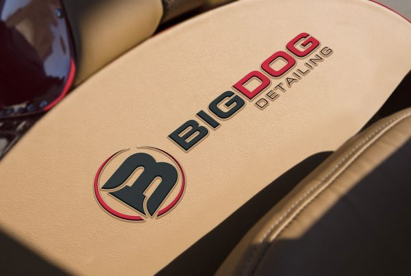 Logo Design for Auto Detailing